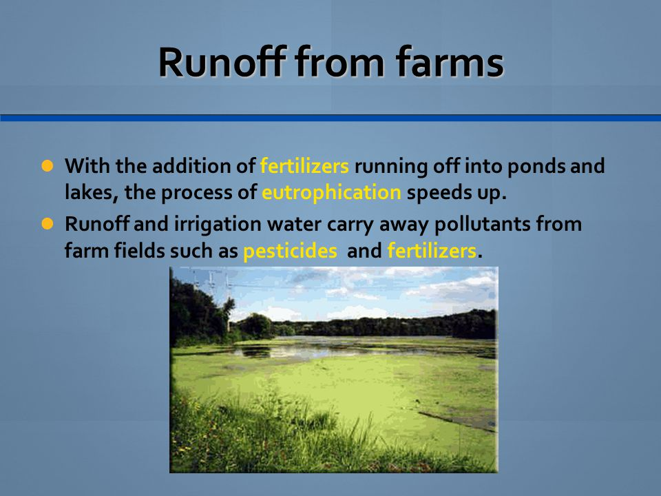 Runoff from farms With the addition of fertilizers running off into ponds and lakes, the process of eutrophication speeds up.