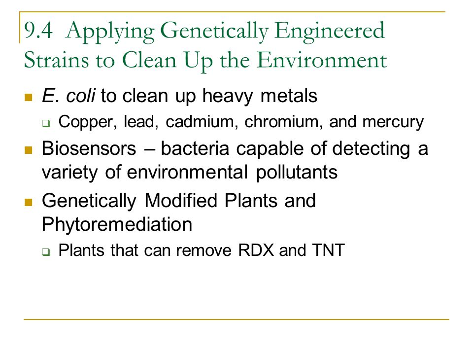 9.4 Applying Genetically Engineered Strains to Clean Up the Environment