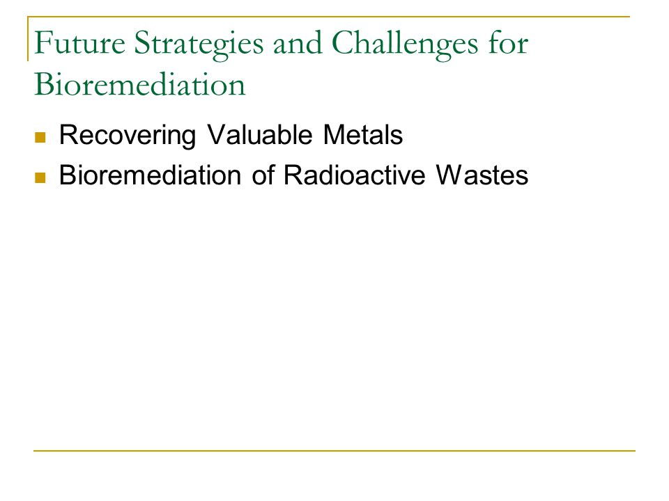 Future Strategies and Challenges for Bioremediation