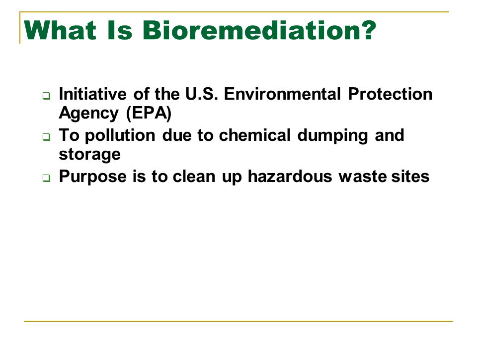 What Is Bioremediation