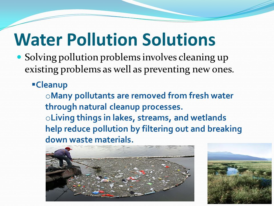 Water pollution and solutions essay