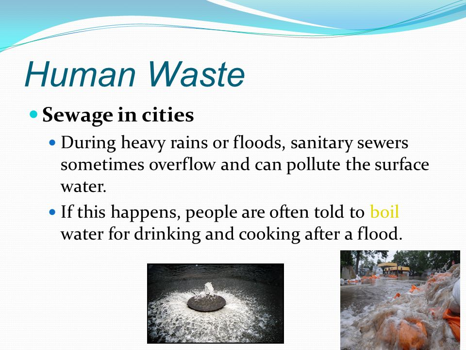 Human Waste Sewage in cities