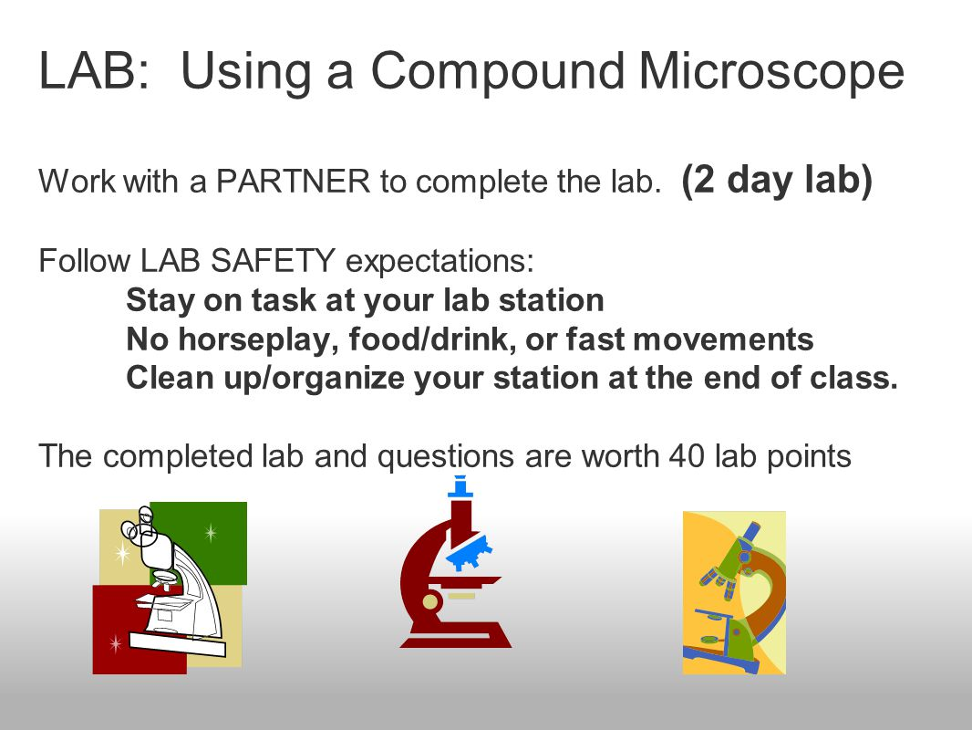 LAB: Using a Compound Microscope