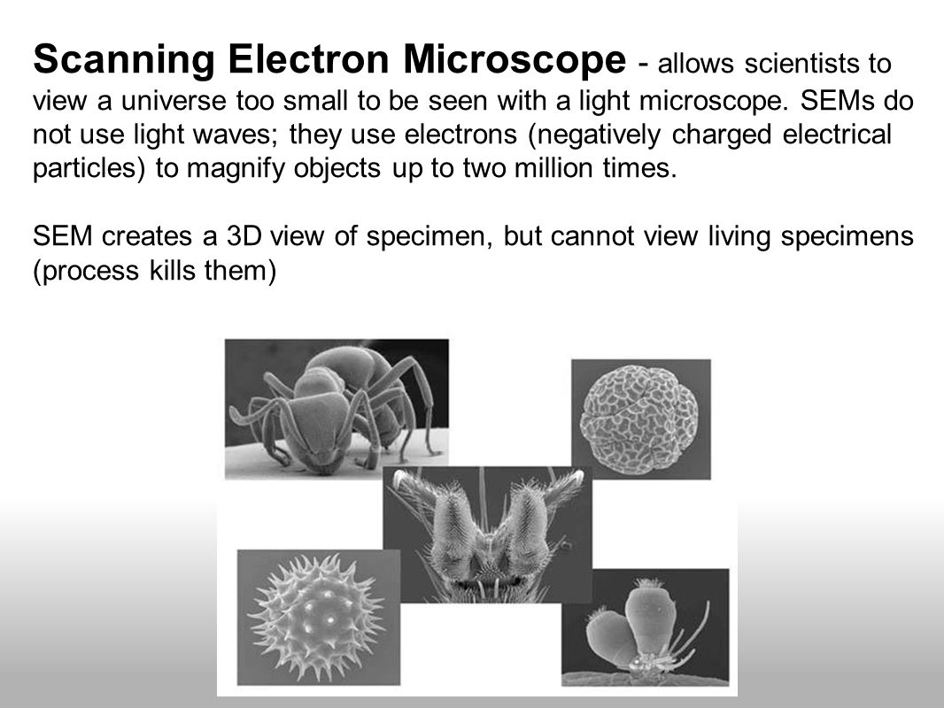 Scanning Electron Microscope - allows scientists to view a universe too small to be seen with a light microscope. SEMs do not use light waves; they use electrons (negatively charged electrical particles) to magnify objects up to two million times.