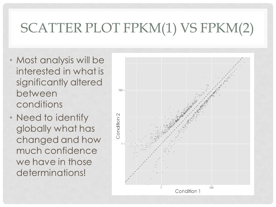 Scatter Plot FPKM(1) vs FPKM(2)
