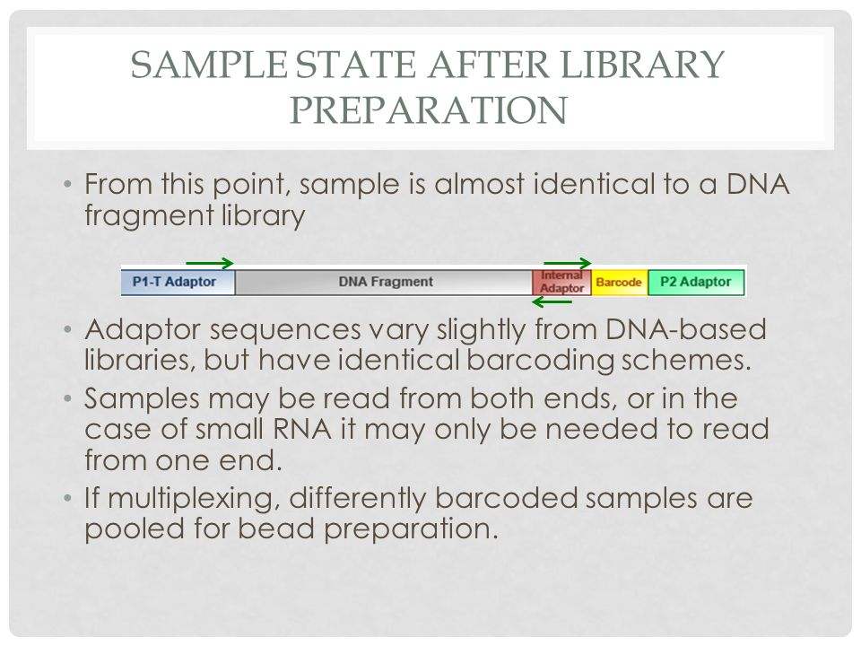 Sample state after library preparation