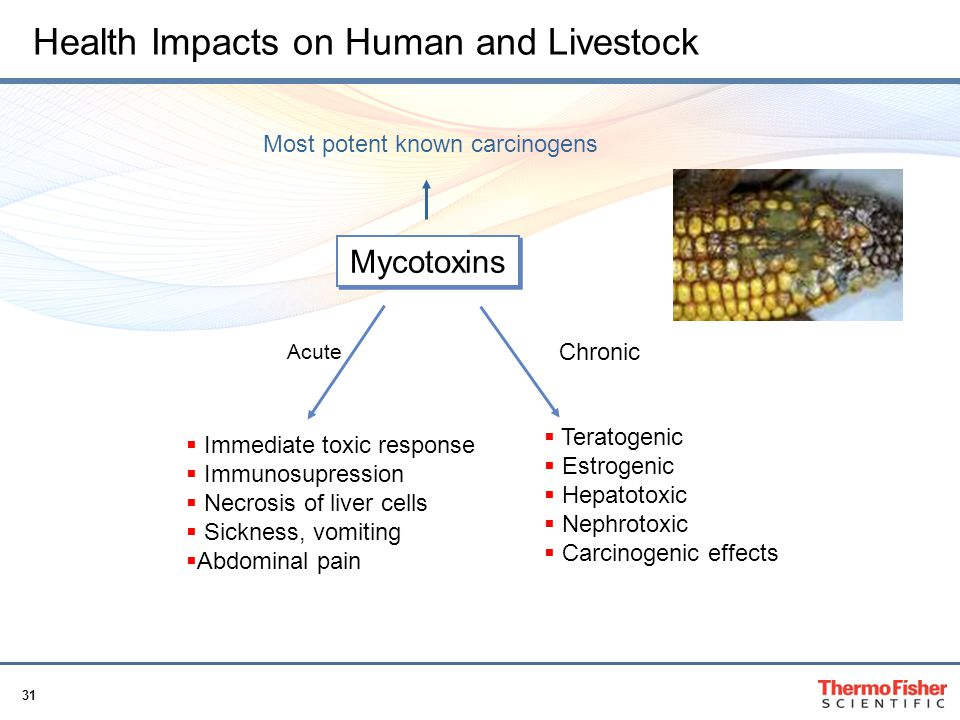 Health Impacts on Human and Livestock