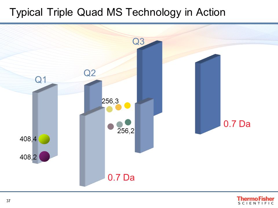 Typical Triple Quad MS Technology in Action