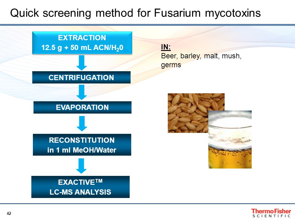 Quick screening method for Fusarium mycotoxins