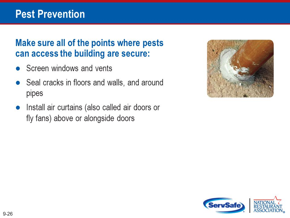 Pest Prevention Make sure all of the points where pests can access the building are secure: Screen windows and vents.