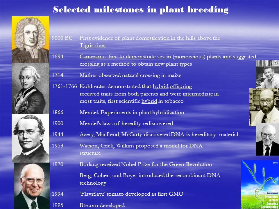 Selected milestones in plant breeding