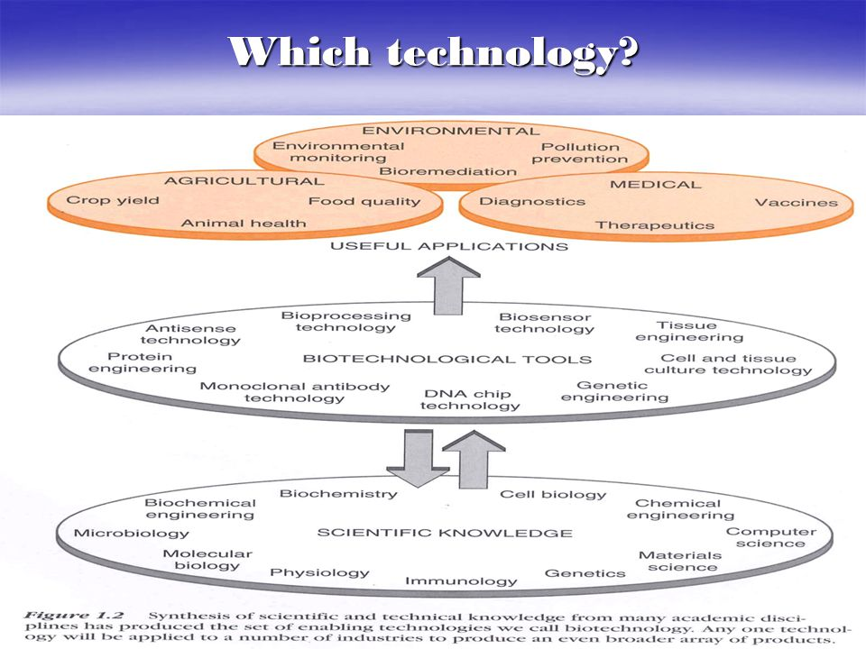 Which technology