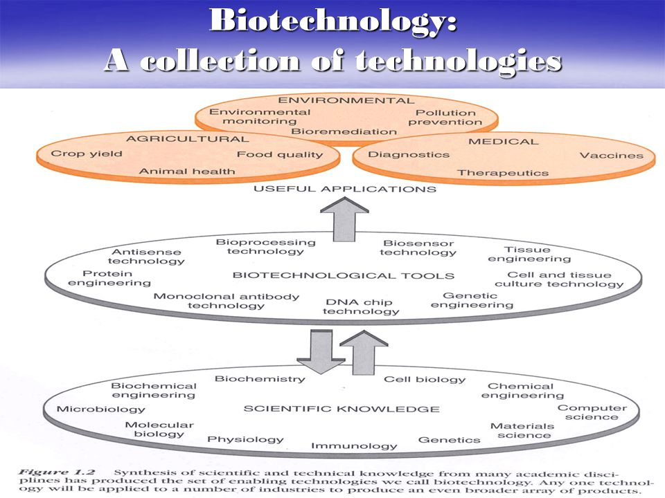 Biotechnology: A collection of technologies