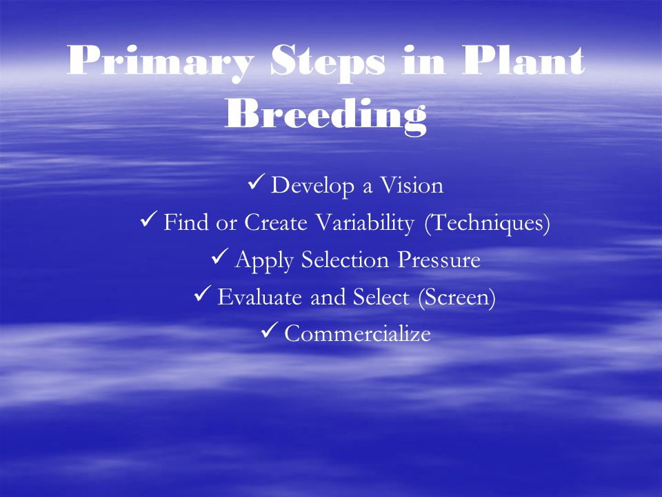 Primary Steps in Plant Breeding