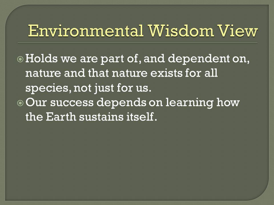 Environmental Wisdom View