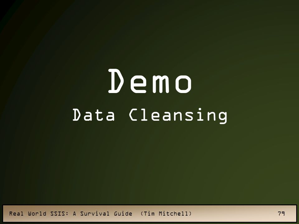 Demo Data Cleansing