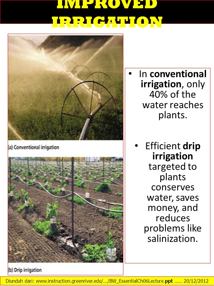 In conventional irrigation, only 40% of the water reaches plants.
