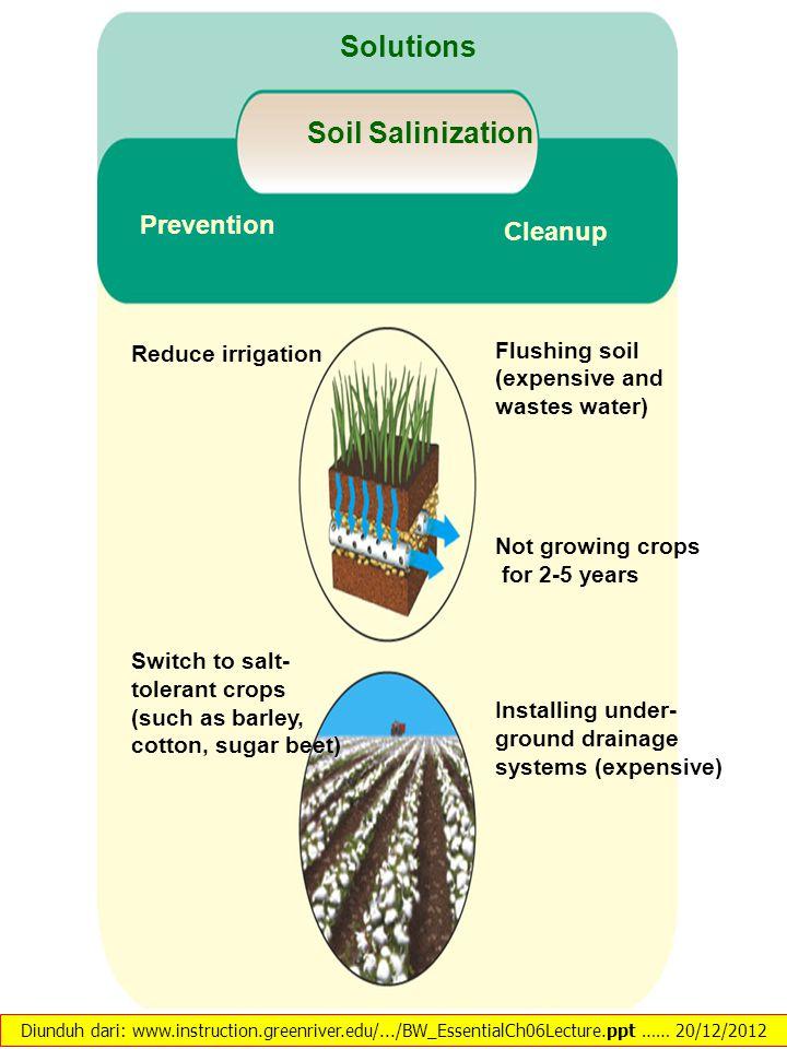 Ketahanan sumberdaya alam dan pangan ppt download for Organic soil solutions