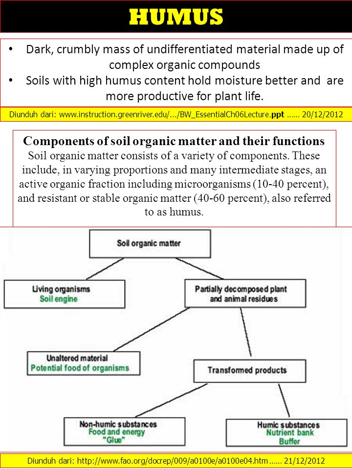Components of soil organic matter and their functions