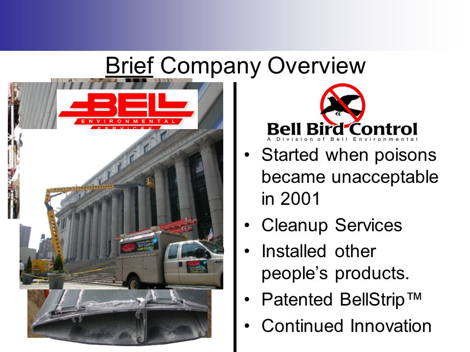 Brief Company Overview