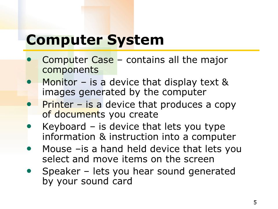 Computer System Computer Case – contains all the major components