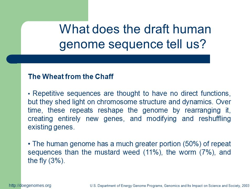 What does the draft human genome sequence tell us