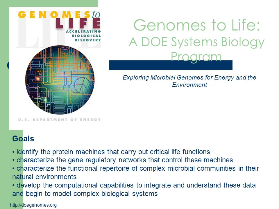 Genomes to Life: A DOE Systems Biology Program