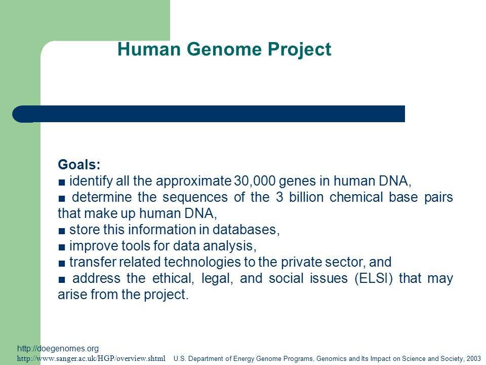 Human Genome Project Goals: