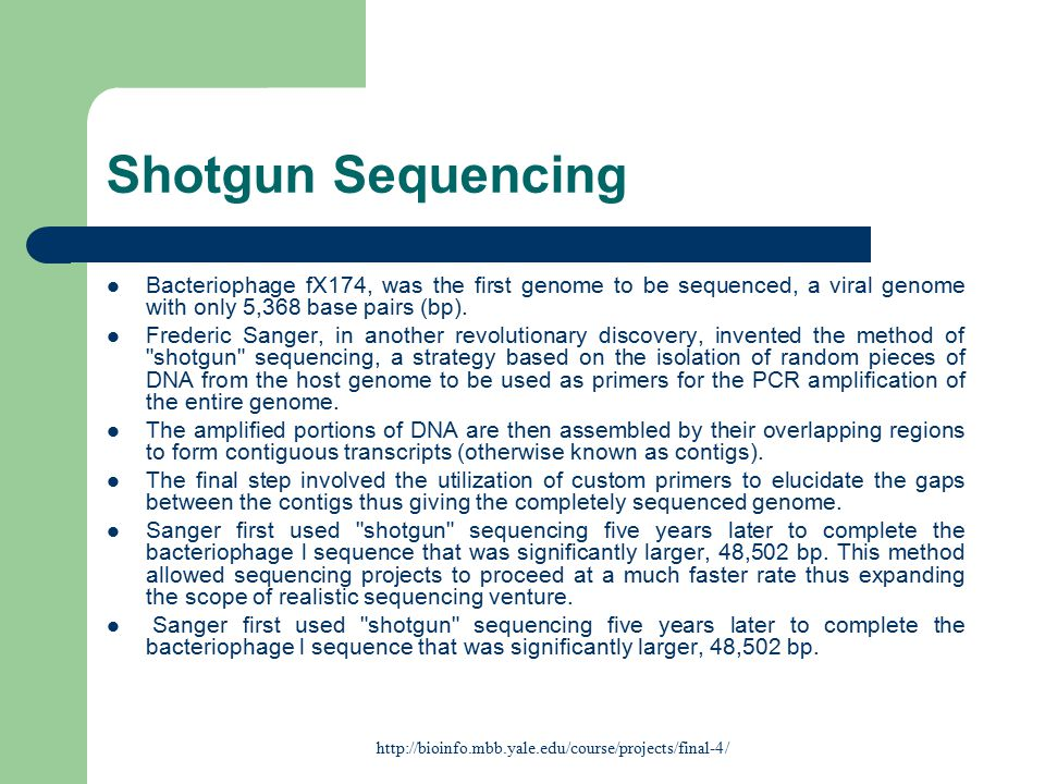 Shotgun Sequencing Bacteriophage fX174, was the first genome to be sequenced, a viral genome with only 5,368 base pairs (bp).