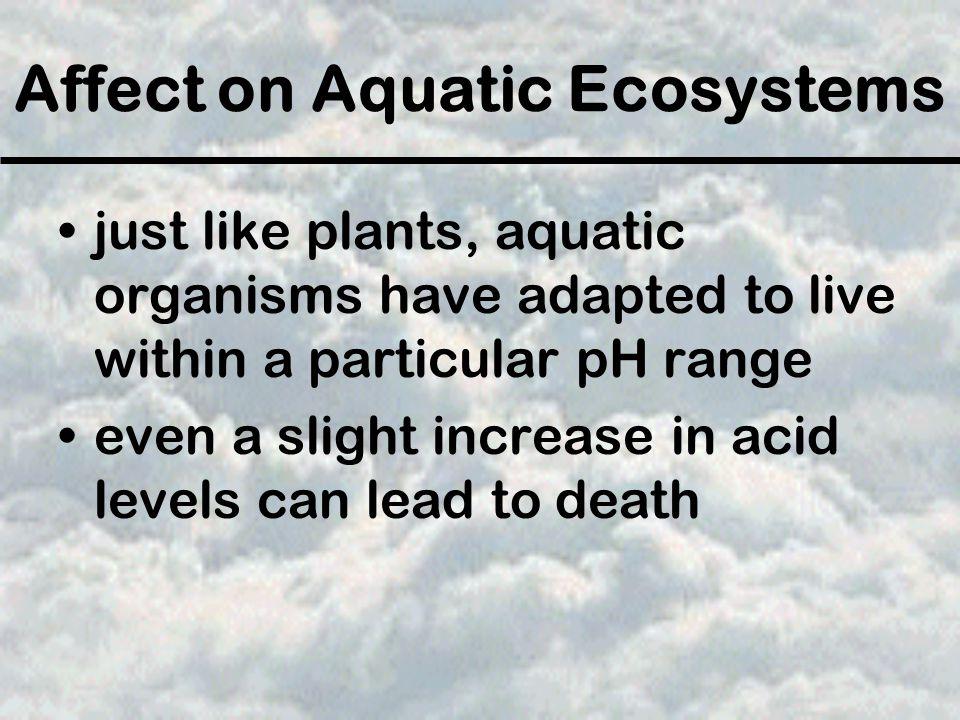 Affect on Aquatic Ecosystems
