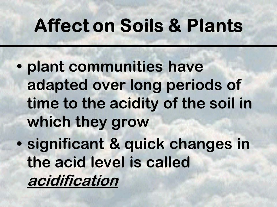 Affect on Soils & Plants