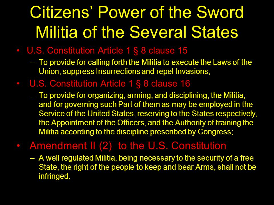 Citizens' Power of the Sword Militia of the Several States