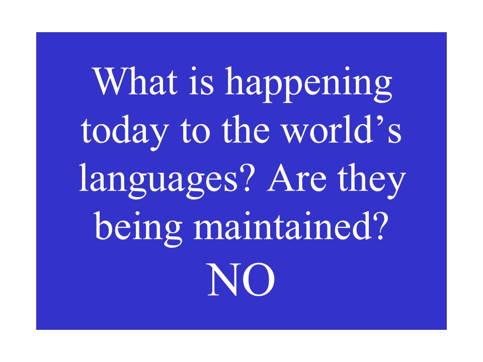 What is happening today to the world's languages