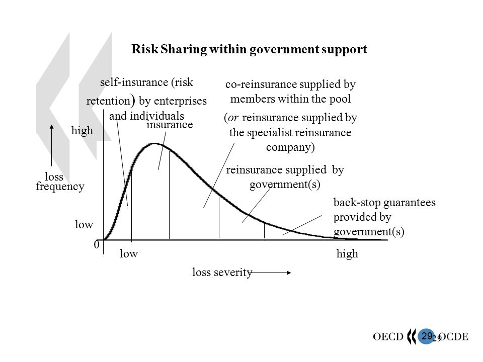 Risk Sharing within government support