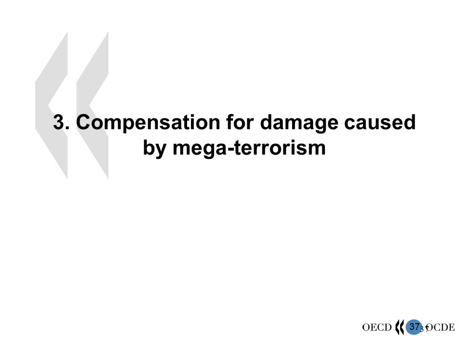 3. Compensation for damage caused by mega-terrorism