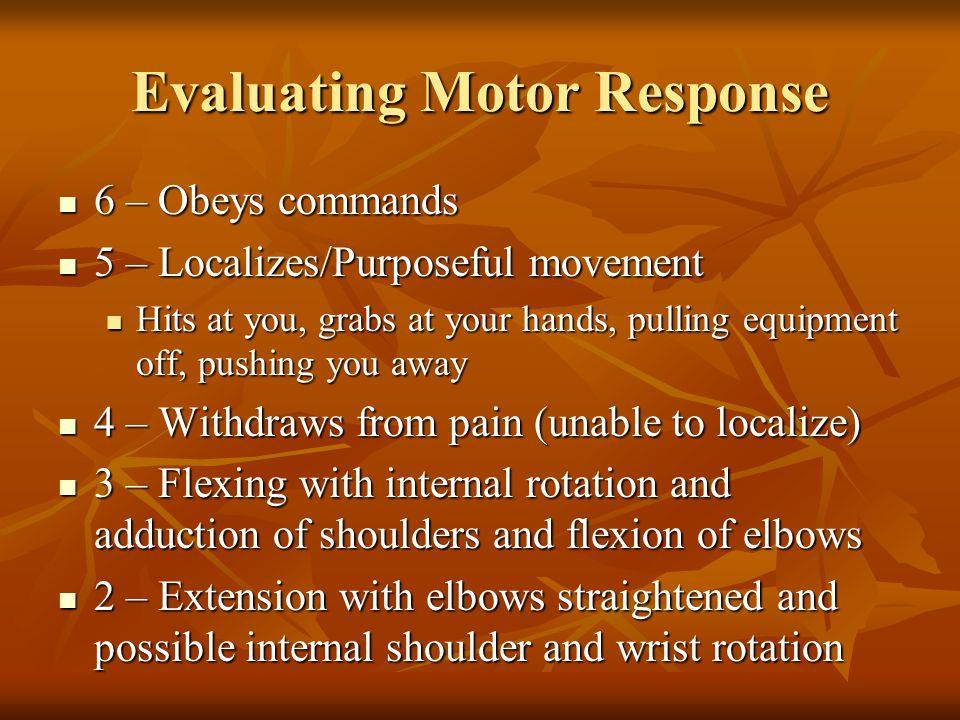 Evaluating Motor Response