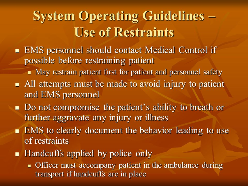 System Operating Guidelines – Use of Restraints