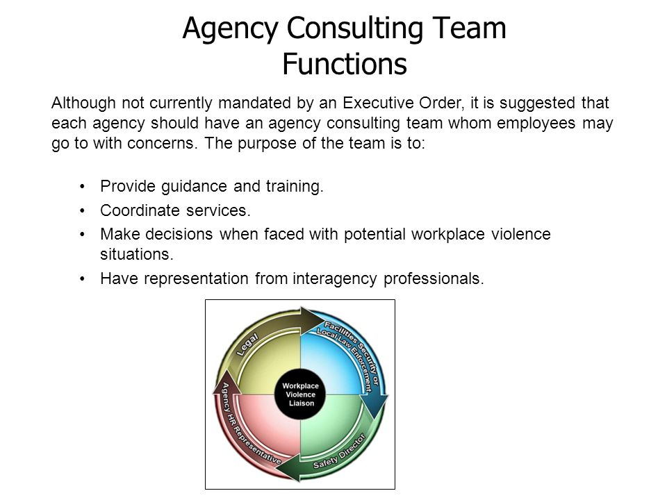 Agency Consulting Team Functions