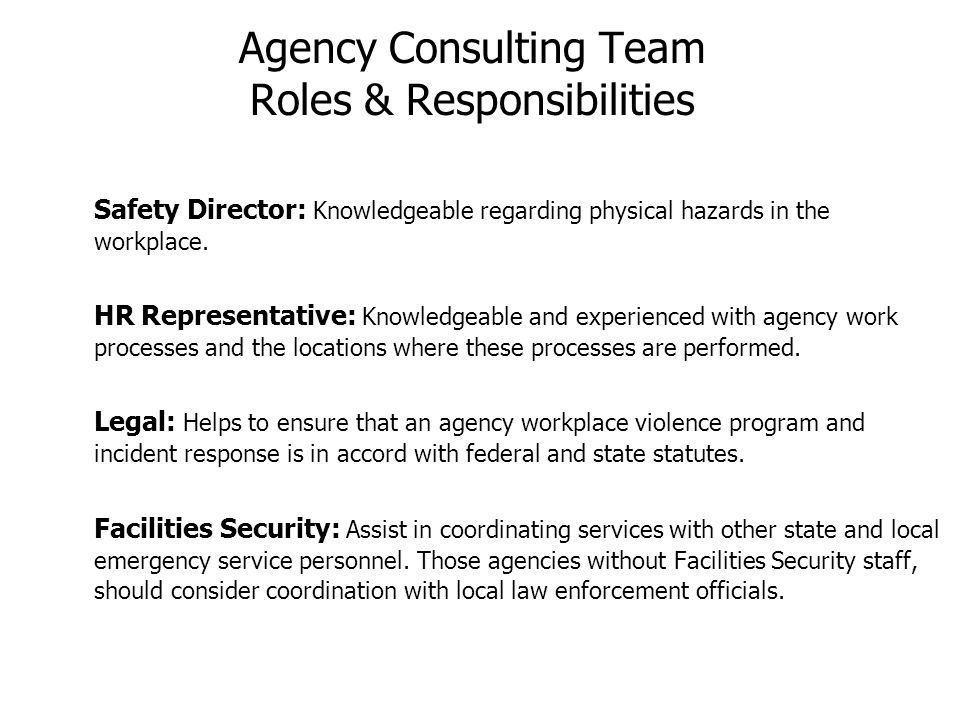Agency Consulting Team Roles & Responsibilities