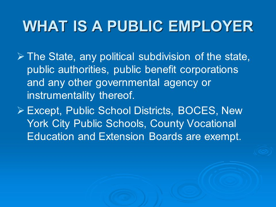 WHAT IS A PUBLIC EMPLOYER