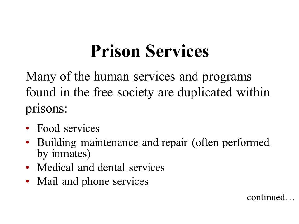 Prison Services Many of the human services and programs found in the free society are duplicated within prisons: