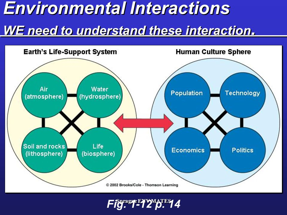 Environmental Interactions WE need to understand these interaction.