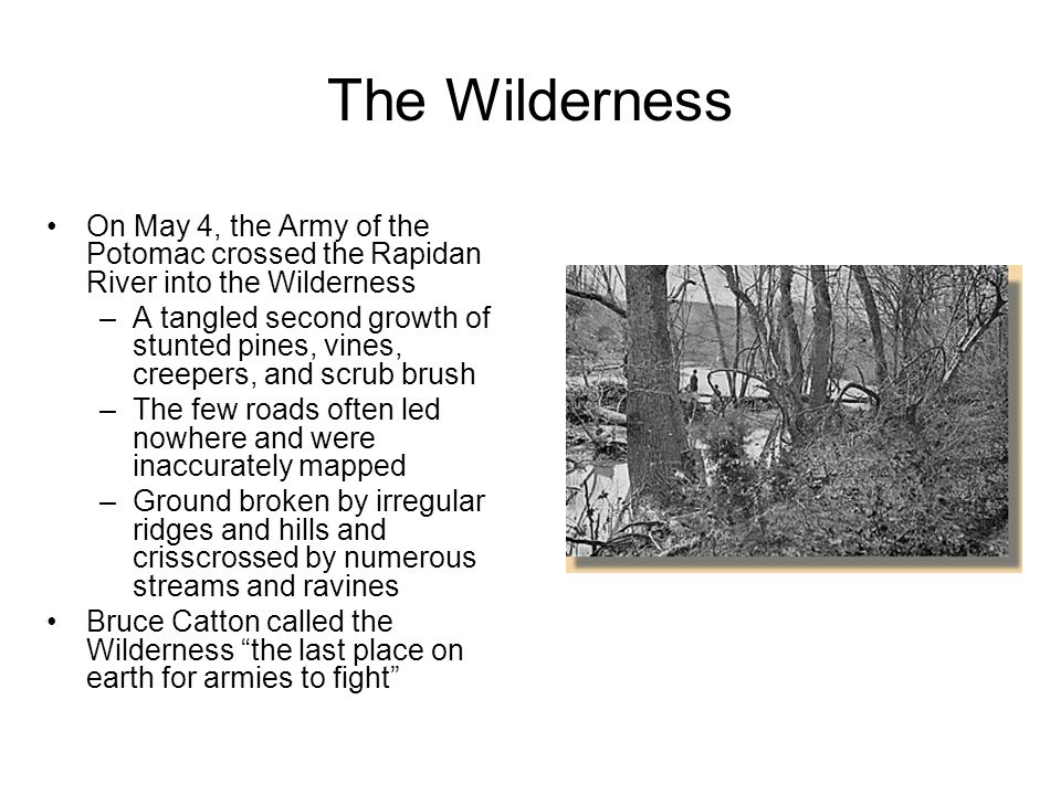 The Wilderness On May 4, the Army of the Potomac crossed the Rapidan River into the Wilderness.