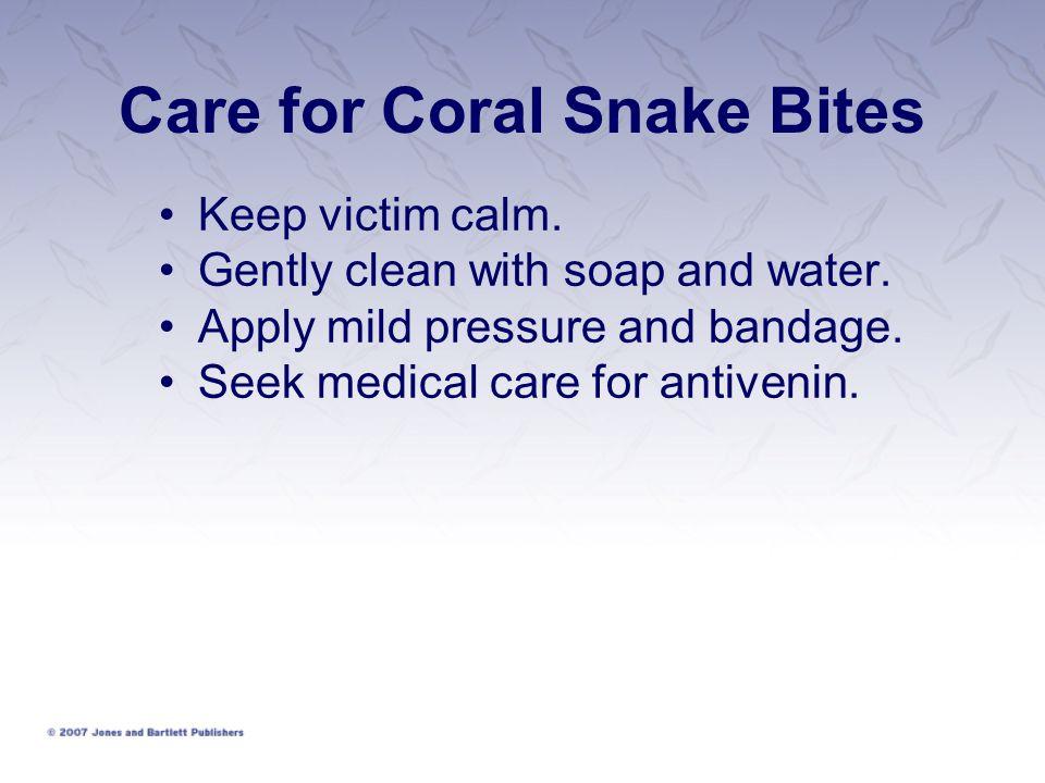 Care for Coral Snake Bites