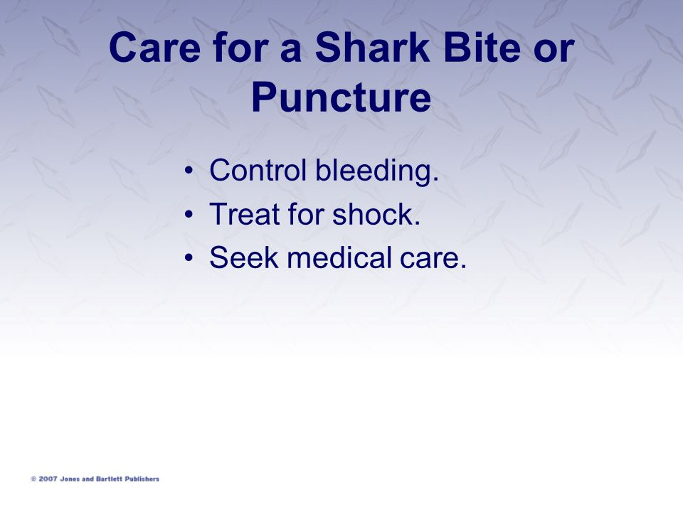 Care for a Shark Bite or Puncture