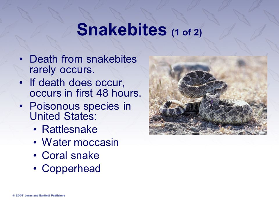 Snakebites (1 of 2) Death from snakebites rarely occurs.