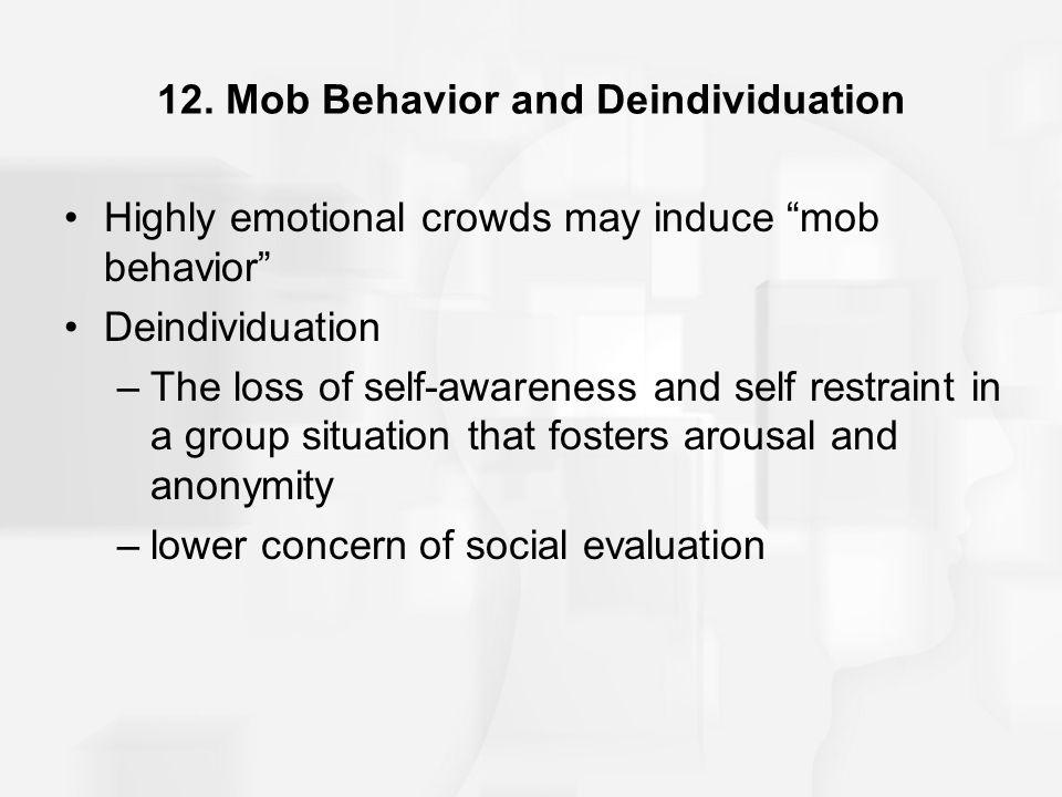 12. Mob Behavior and Deindividuation