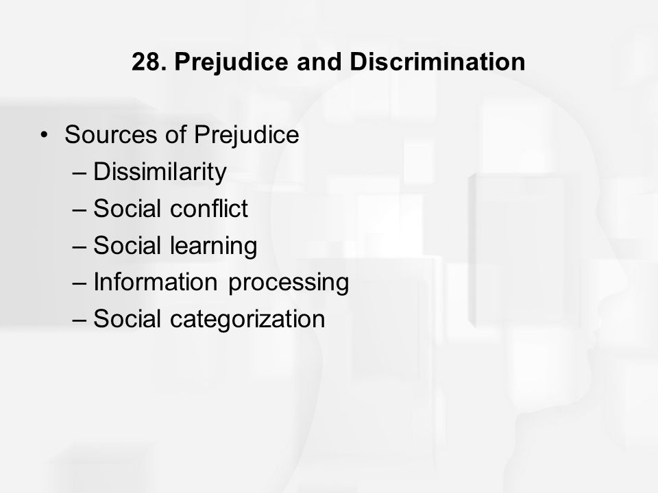28. Prejudice and Discrimination