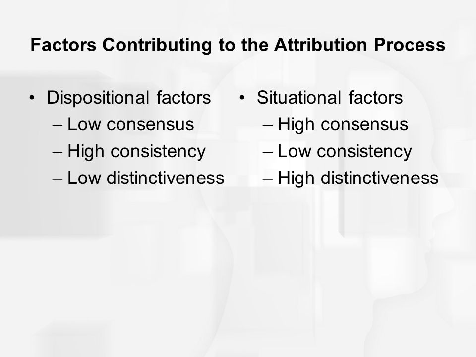 Factors Contributing to the Attribution Process