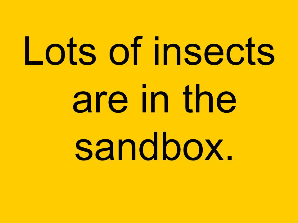 Lots of insects are in the sandbox.